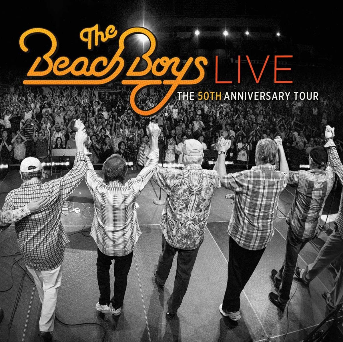 Beach Boys Vinyl Record Memories.com