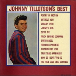 Johnny Tillotson at his best singing Why Do I Love You So at All About Vinyl Records.com