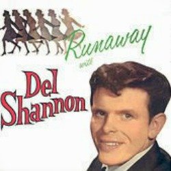 Listen to the Del Shannon Runaway at All About Vinyl Records.com.