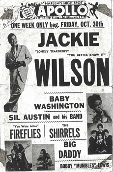 The Fireflies at the Apollo Theater with Jackie Wilson and The Shirrels, along with other classic Doo Wop groups.